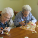 Assisted living communities for Elder